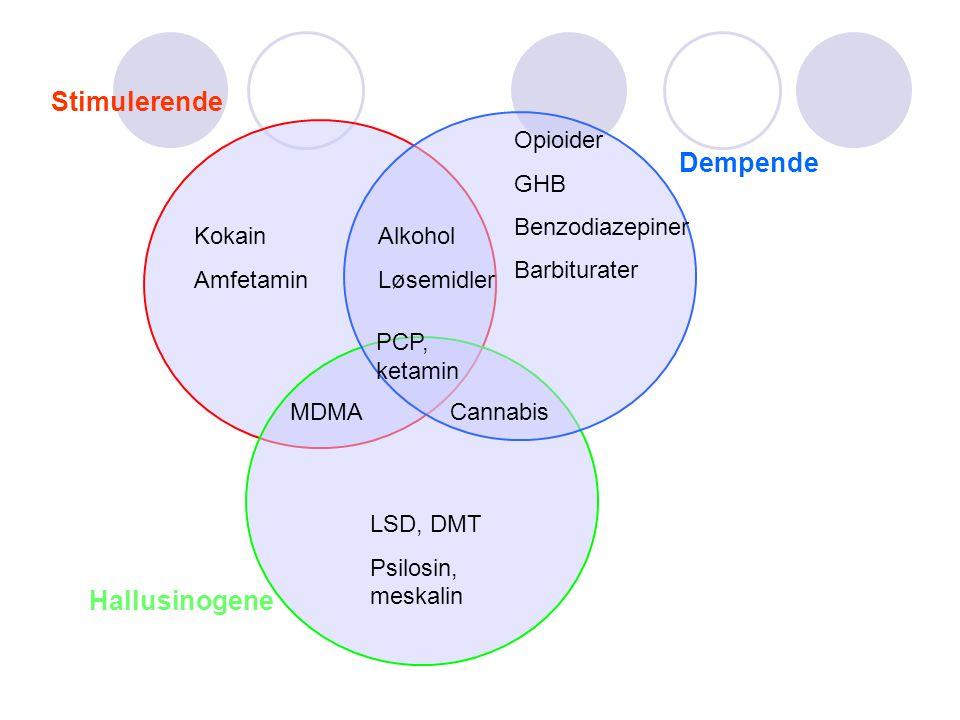 Kokain Amfetamin Opioider GHB Benzodiazepiner Barbiturater LSD, DMT Psilosin, meskalin CannabisMDMA PCP, ketamin Alkohol Løsemidler Hallusinogene Stimulerende Dempende