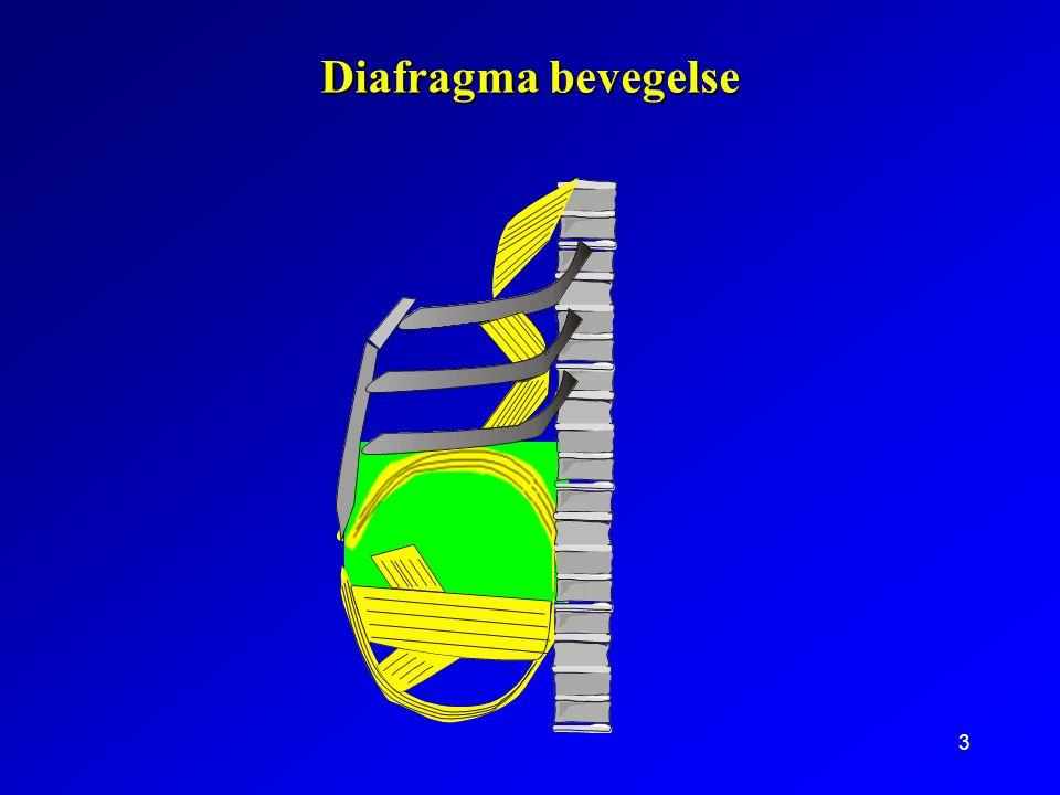 3 Diafragma bevegelse