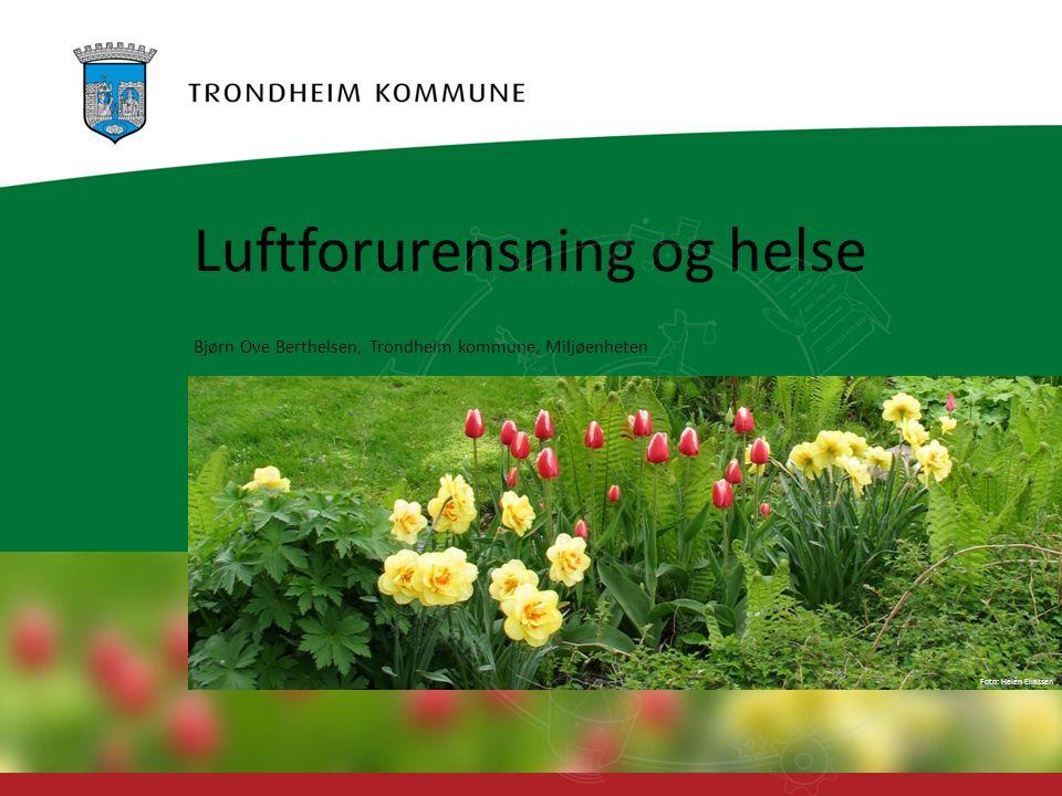 Foto: Geir Hageskal Foto: Helén Eliassen Luftforurensning og helse Bjørn Ove Berthelsen, Trondheim kommune, Miljøenheten