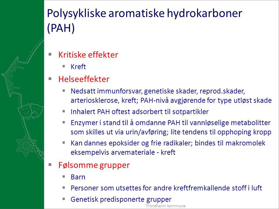 Polysykliske aromatiske hydrokarboner (PAH)  Kritiske effekter  Kreft  Helseeffekter  Nedsatt immunforsvar, genetiske skader, reprod.skader, arteriosklerose, kreft; PAH-nivå avgjørende for type utløst skade  Inhalert PAH oftest adsorbert til sotpartikler  Enzymer i stand til å omdanne PAH til vannløselige metabolitter som skilles ut via urin/avføring; lite tendens til opphoping kropp  Kan dannes epoksider og frie radikaler; bindes til makromolek eksempelvis arvemateriale - kreft  Følsomme grupper  Barn  Personer som utsettes for andre kreftfremkallende stoff i luft  Genetisk predisponerte grupper Trondheim kommune