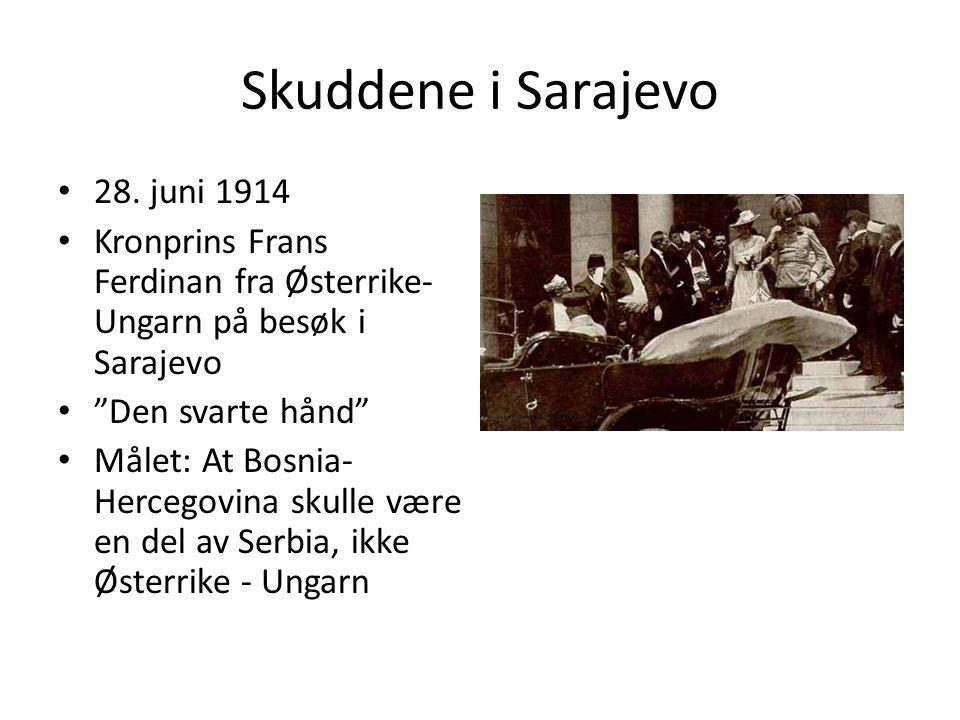 Skuddene i Sarajevo 28.