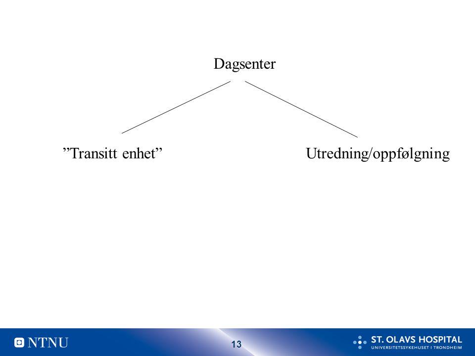 """13 Dagsenter """"Transitt enhet""""Utredning/oppfølgning"""