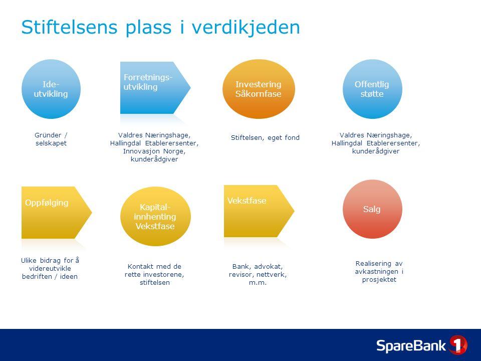 Investeringskriterier I Generelt Investeringen må være knyttet til et selskap som er lokalisert i Hallingdal eller Valdres, eller at verdiskapningen i form av produksjon, arbeidsplasser og lignende skjer i Hallingdal eller Valdres.