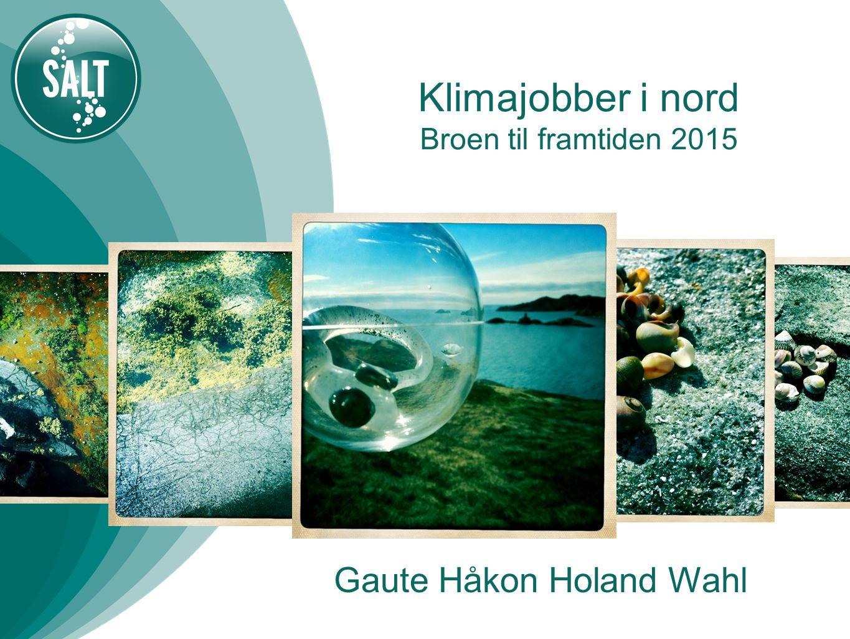Klimajobber i nord Broen til framtiden 2015 Gaute Håkon Holand Wahl