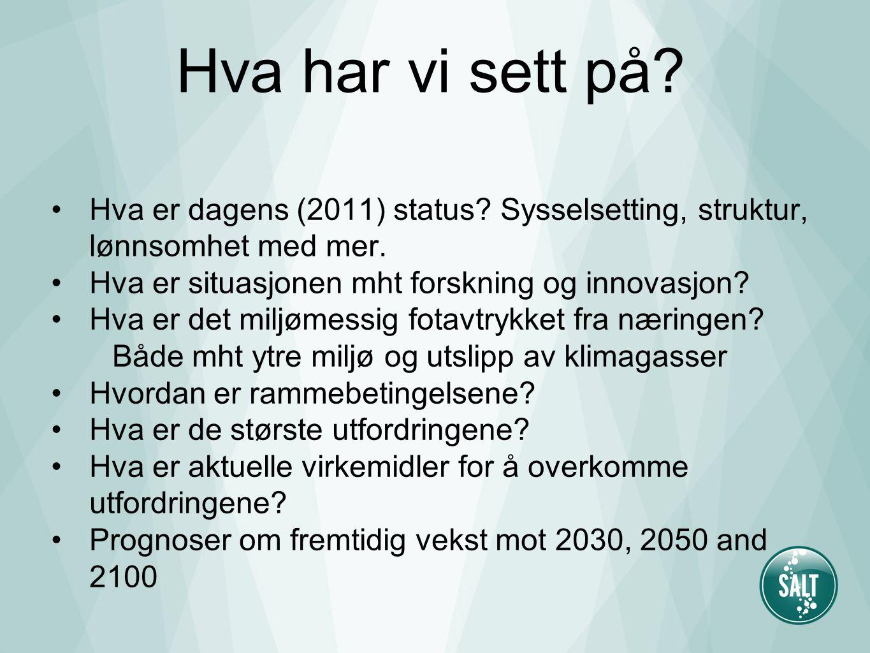 Hva har vi sett på. Hva er dagens (2011) status. Sysselsetting, struktur, lønnsomhet med mer.