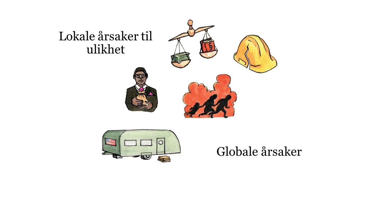 Globale årsaker Lokale årsaker til ulikhet