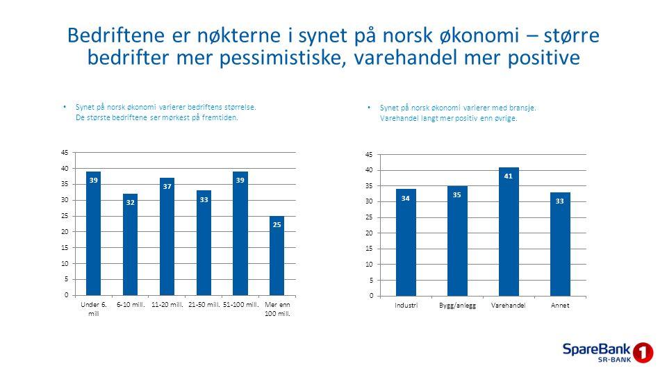 Bedriftene er nøkterne i synet på norsk økonomi – større bedrifter mer pessimistiske, varehandel mer positive Synet på norsk økonomi varierer bedrifte