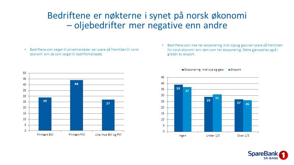 Bedriftene som selger til privatmarkeder ser lysere på fremtiden til norsk økonomi enn de som selger til bedriftsmarkedet. Bedriftene som ikke har eks