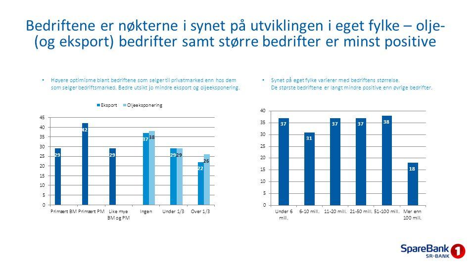 Høyere optimisme blant bedriftene som selger til privatmarked enn hos dem som selger bedriftsmarked. Bedre utsikt jo mindre eksport og oljeeksponering