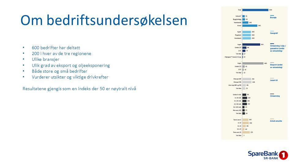 Bedriftsundersøkelsen - hovedfunn Hovedfunnene fra bedriftsundersøkelsen viser at: Regionen er så mye mer enn bare olje – et flertall av bedriftene venter vekst i omsetning og ansatte – og ordrereserve Økt usikkerhet gjenspeiles i mer dempede investeringer i 2015, men gir sammen kostnadsfokus og bedre lønnsomhet Nedgang i oljeprisen gir utfordringer for en del bedrifter, men samtidig fører økt usikkerhet om norsk økonomi til svakere kronekurs, som gir drahjelp for mange bedrifter Og til slutt: offentlig pengebruk herunder infrastruktur gir medvind og styrefart.