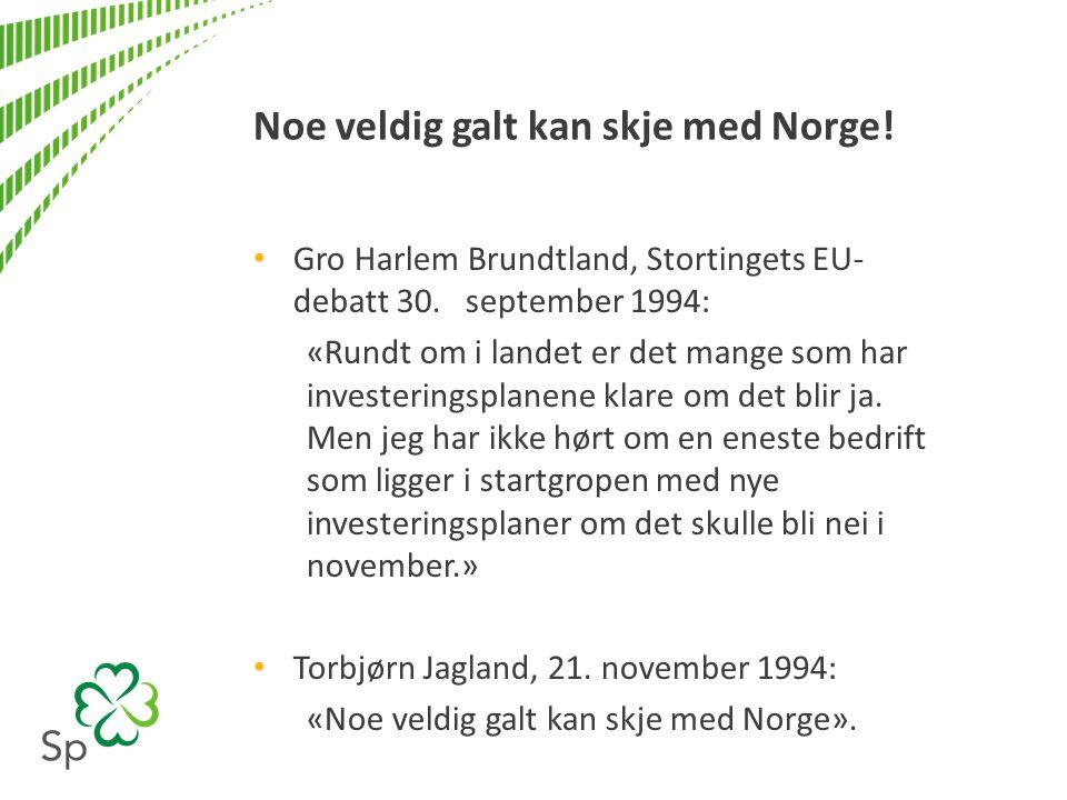 Gro Harlem Brundtland, Stortingets EU- debatt 30.