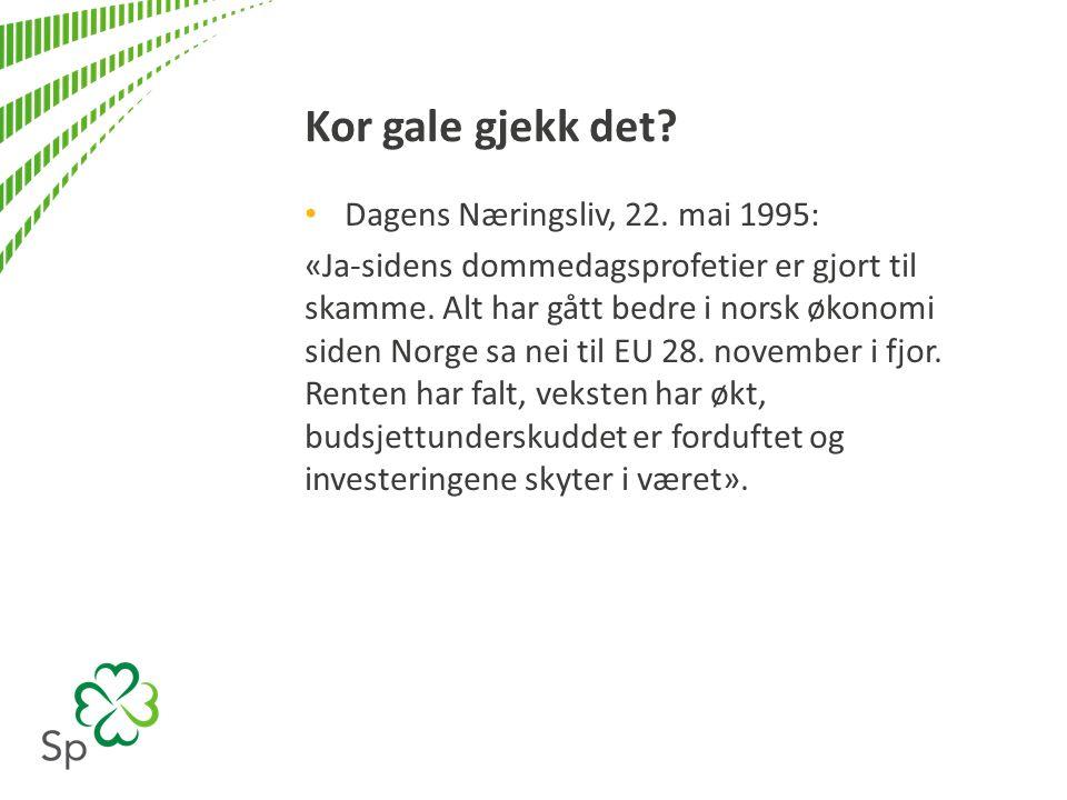 Dagens Næringsliv, 22. mai 1995: «Ja-sidens dommedagsprofetier er gjort til skamme.