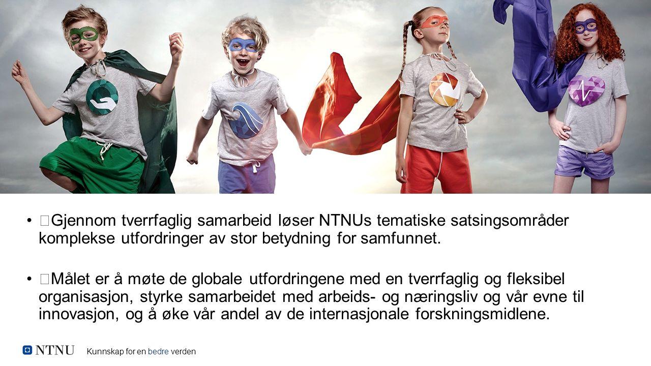 Gjennom tverrfaglig samarbeid løser NTNUs tematiske satsingsområder komplekse utfordringer av stor betydning for samfunnet. Målet er å møte de globale