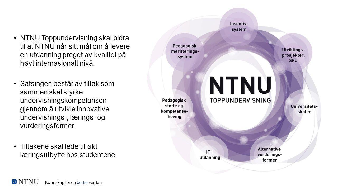 Kunnskap for en bedre verden NTNU Toppundervisning skal bidra til at NTNU når sitt mål om å levere en utdanning preget av kvalitet på høyt internasjon