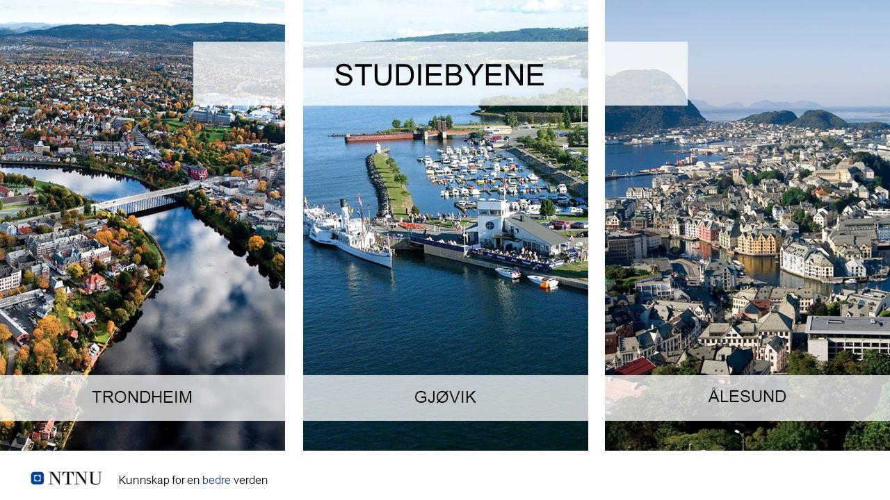 Kunnskap for en bedre verden TRONDHEIMGJØVIK ÅLESUND STUDIEBYENE