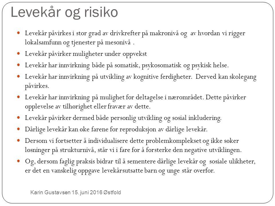 Levekår og risiko Karin Gustavsen 15.