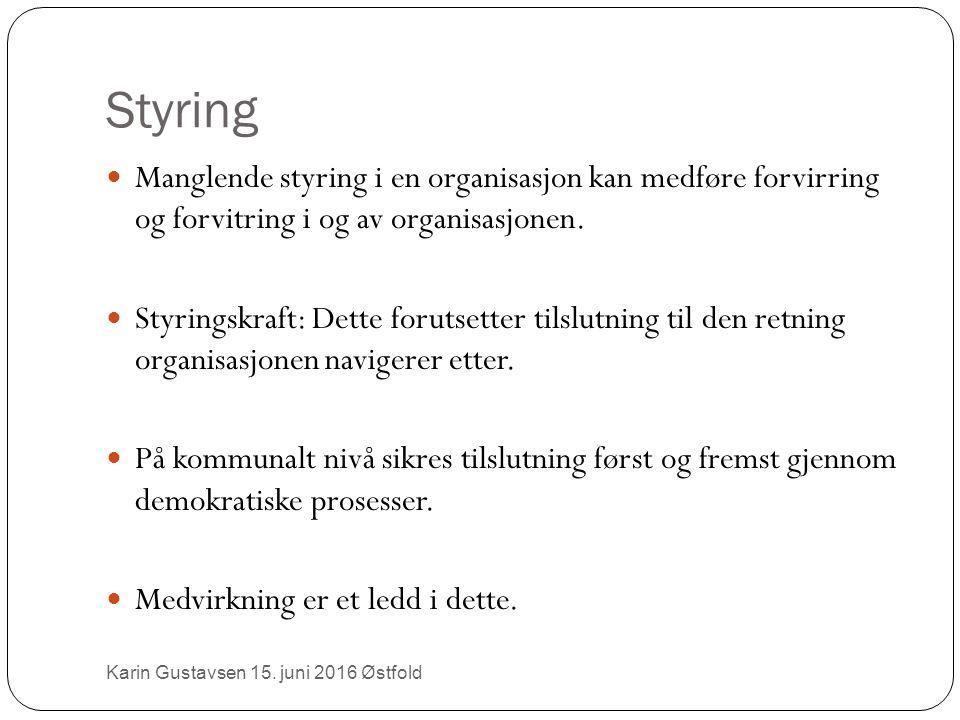 Styring Manglende styring i en organisasjon kan medføre forvirring og forvitring i og av organisasjonen.