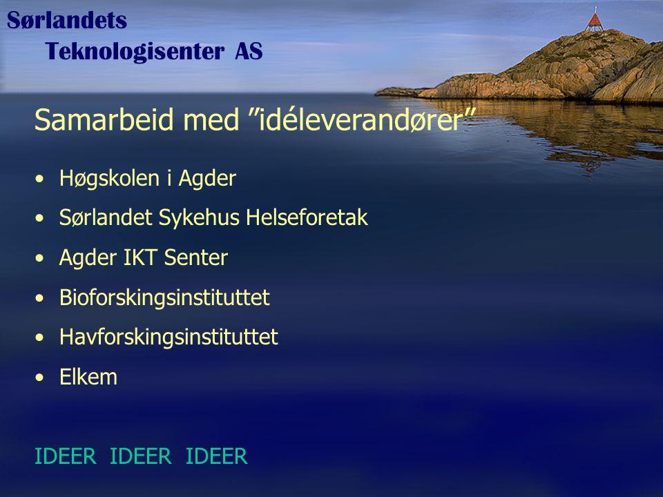 """Sørlandets Teknologisenter AS Samarbeid med """"idéleverandører"""" Høgskolen i Agder Sørlandet Sykehus Helseforetak Agder IKT Senter Bioforskingsinstitutte"""