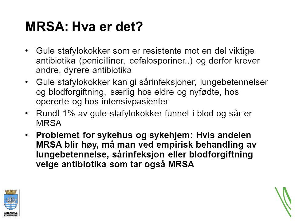 MRSA: Hva er det.