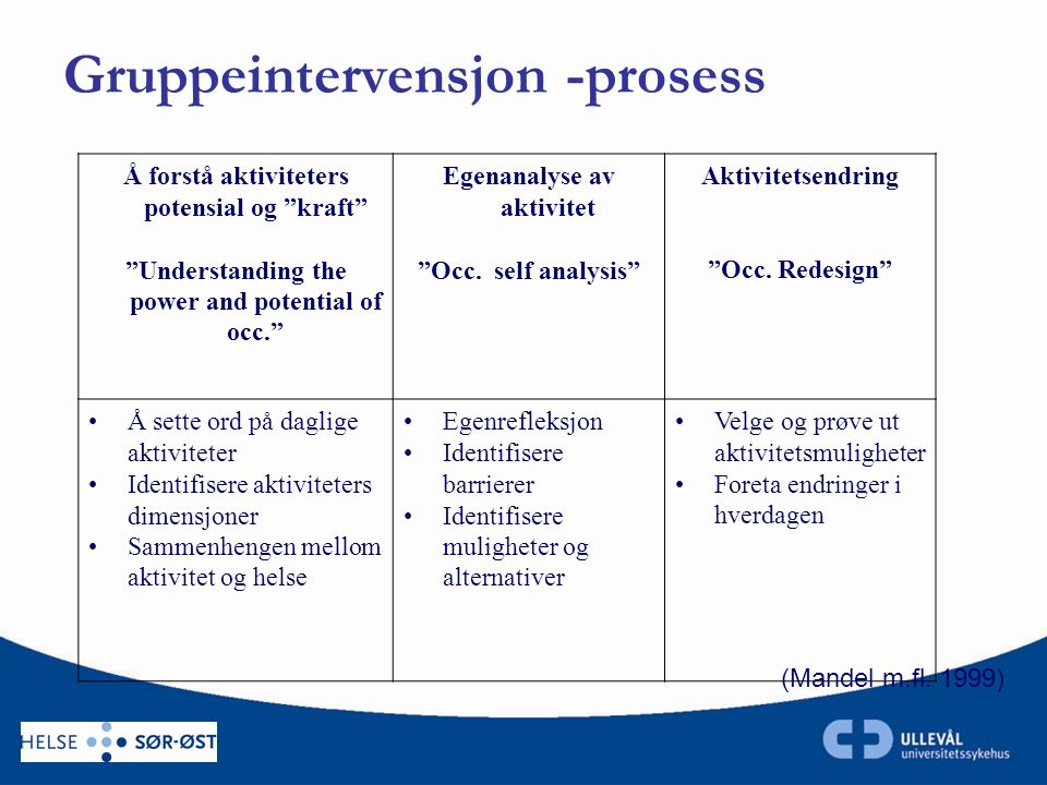 "Å forstå aktiviteters potensial og ""kraft"" ""Understanding the power and potential of occ."" Egenanalyse av aktivitet ""Occ. self analysis"" Aktivitetsend"