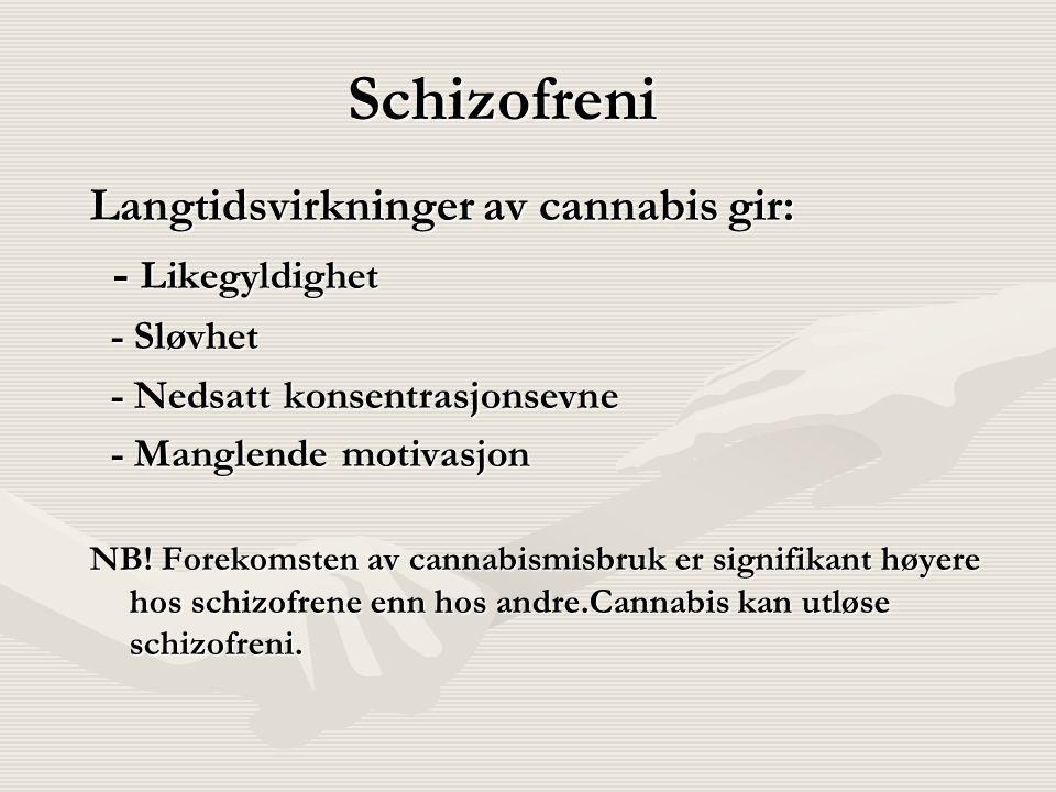 Schizofreni Langtidsvirkninger av cannabis gir: - Likegyldighet - Likegyldighet - Sløvhet - Sløvhet - Nedsatt konsentrasjonsevne - Nedsatt konsentrasj