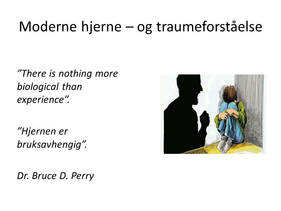 Moderne hjerne – og traumeforståelse There is nothing more biological than experience .