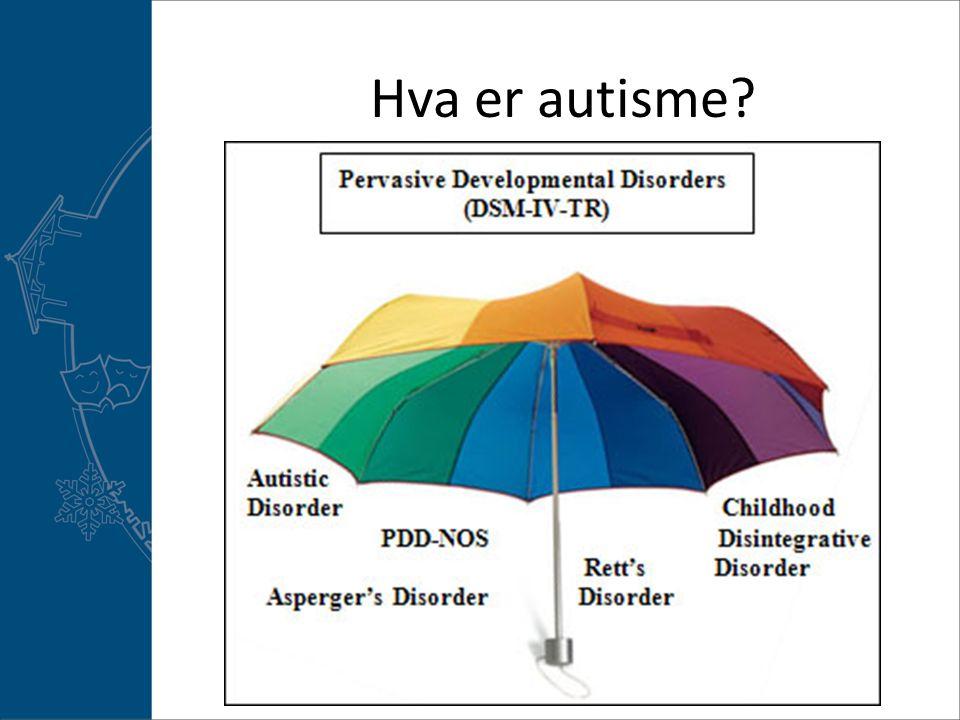 Hva er autisme?