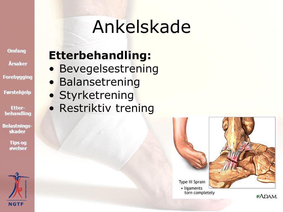 Behandling: PRICE Reaksjonsdempende medikamenter Kiropraktikk MR Eventuelt operasjon Ankelskade Førstehjelp Forebygging Omfang Tips og øvelser Tips og øvelser Etter- behandling Etter- behandling Årsaker Belastnings- skader Belastnings- skader