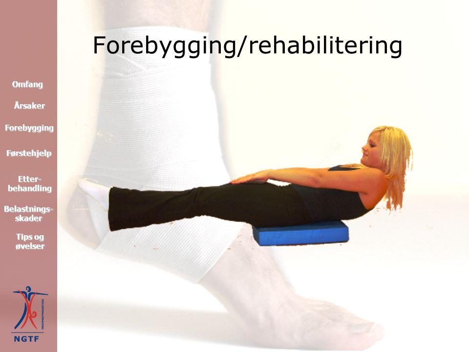 Rygglidelser Behandling: Kiropraktor Fysioterapi/massasje Bevegelse- og styrketrening Medikamentell behandling Korrigere evt.
