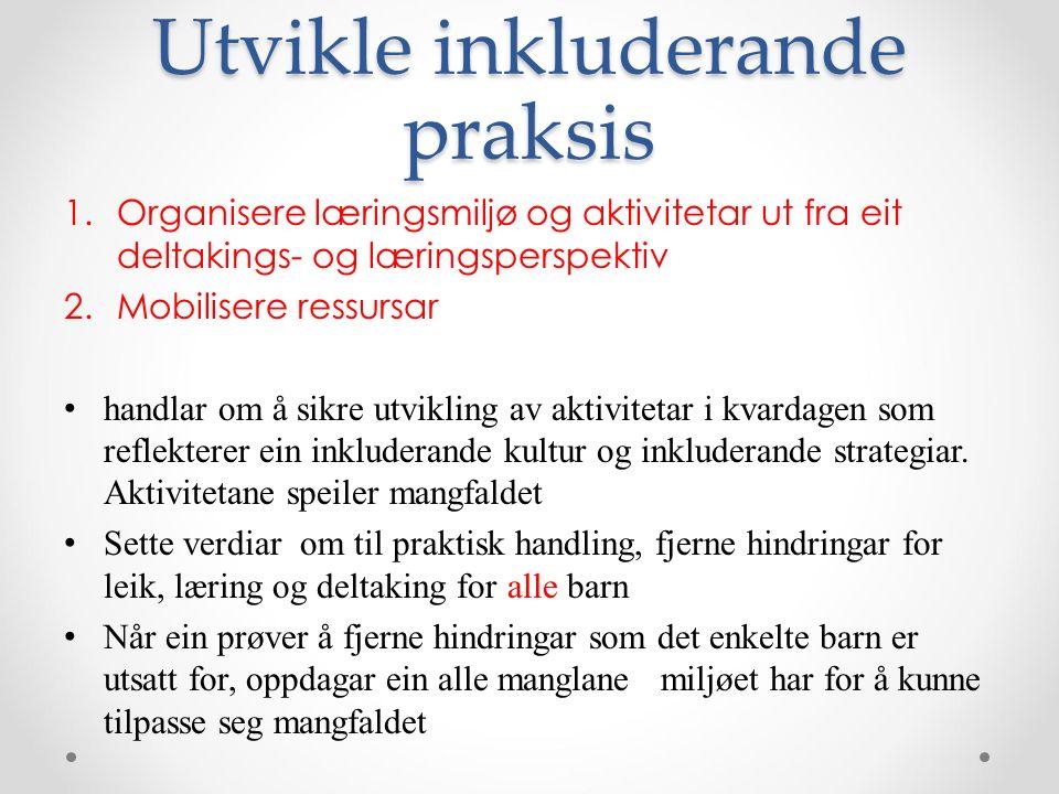 Utvikle inkluderande praksis 1.Organisere læringsmiljø og aktivitetar ut fra eit deltakings- og læringsperspektiv 2.Mobilisere ressursar handlar om å