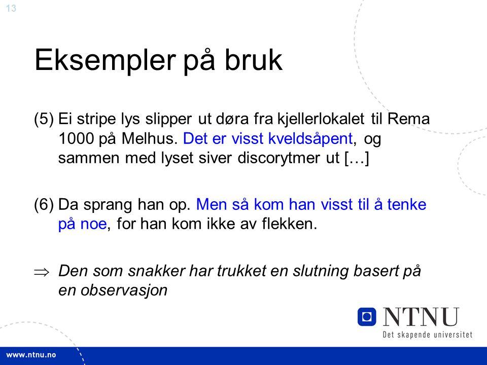 13 Eksempler på bruk (5)Ei stripe lys slipper ut døra fra kjellerlokalet til Rema 1000 på Melhus.