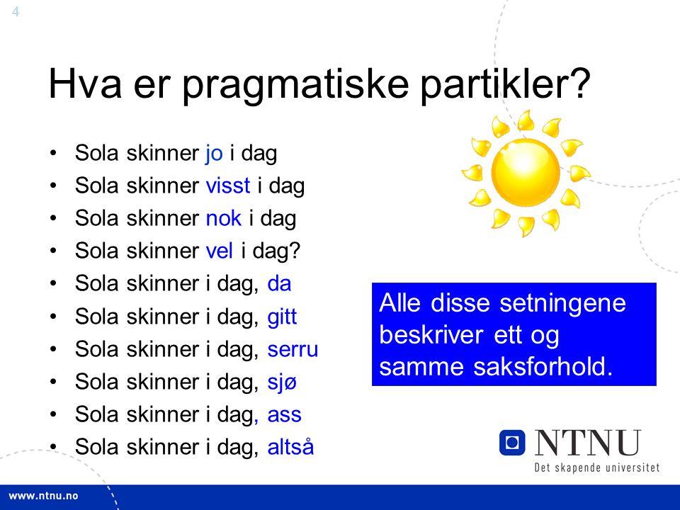 4 Hva er pragmatiske partikler.
