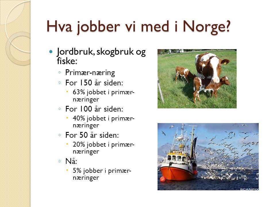 Hva jobber vi med i Norge.