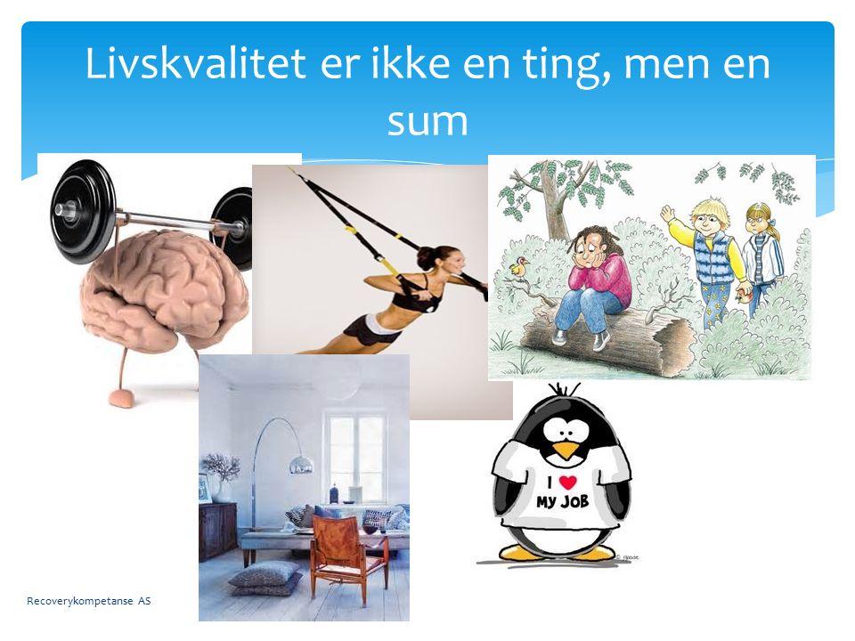  Når akademikere skal presentere «Norsk» Recovery har de en tendens til å hoppe over likemannsarbeide.