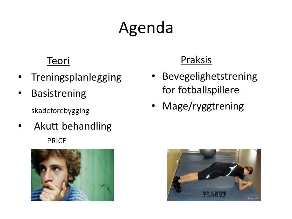 Hva er treningsplanlegging.