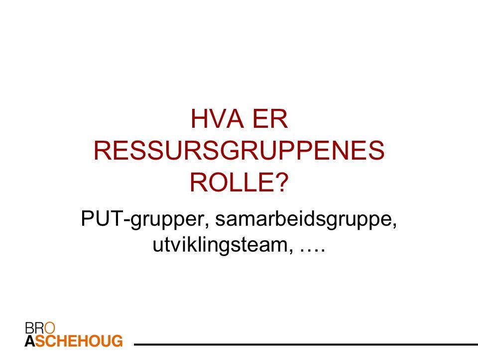 HVA ER RESSURSGRUPPENES ROLLE PUT-grupper, samarbeidsgruppe, utviklingsteam, ….