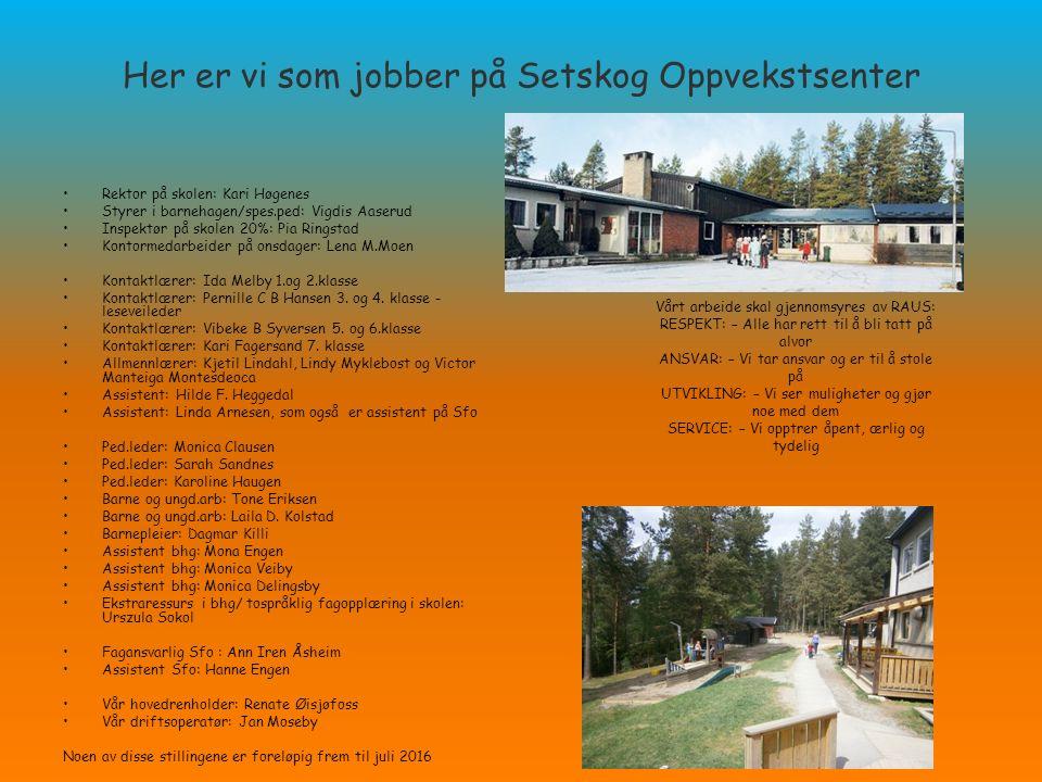 Her er vi som jobber på Setskog Oppvekstsenter Rektor på skolen: Kari Høgenes Styrer i barnehagen/spes.ped: Vigdis Aaserud Inspektør på skolen 20%: Pi