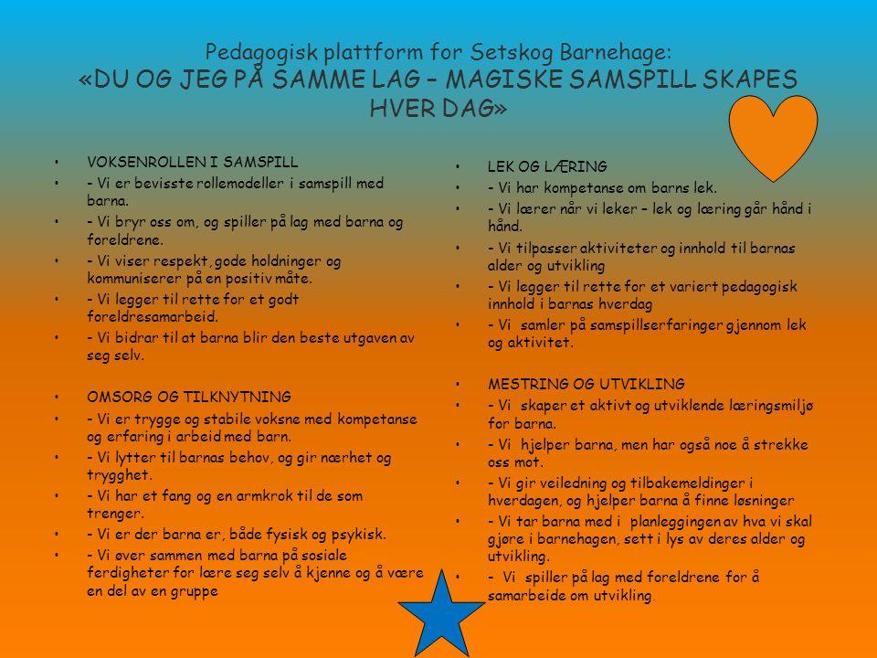 Pedagogisk plattform for Setskog Barnehage: «DU OG JEG PÅ SAMME LAG – MAGISKE SAMSPILL SKAPES HVER DAG» VOKSENROLLEN I SAMSPILL - Vi er bevisste rolle