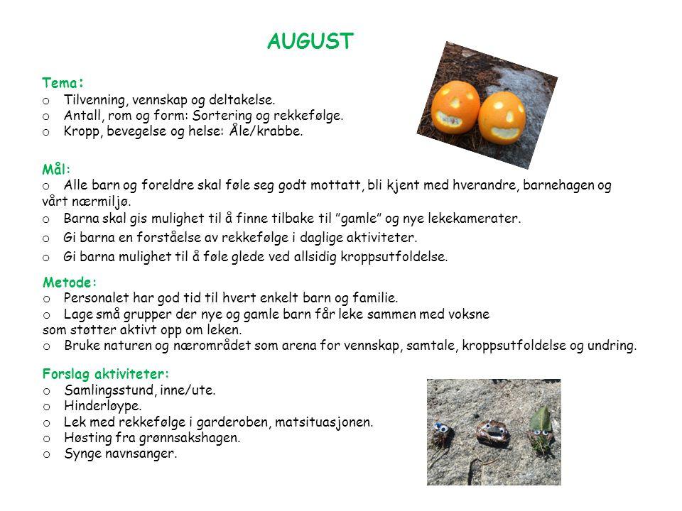 AUGUST Tema : o Tilvenning, vennskap og deltakelse.