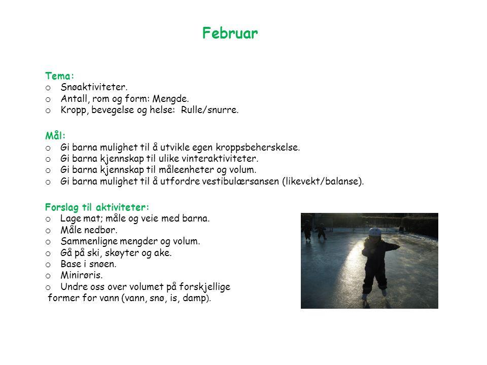 Februar Tema: o Snøaktiviteter. o Antall, rom og form: Mengde.