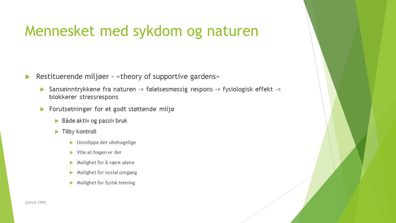 Mennesket med sykdom og naturen  Restituerende miljøer – «theory of supportive gardens»  Sanseinntrykkene fra naturen -> følelsesmessig respons -> f