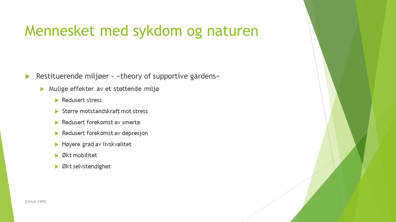 Mennesket med sykdom og naturen  Restituerende miljøer – «theory of supportive gardens»  Mulige effekter av et støttende miljø  Redusert stress  S