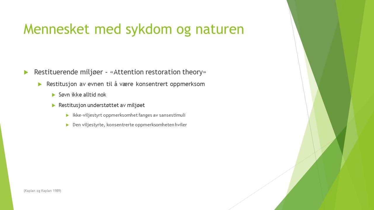 Mennesket med sykdom og naturen  Restituerende miljøer – «Attention restoration theory»  Restitusjon av evnen til å være konsentrert oppmerksom  Sø