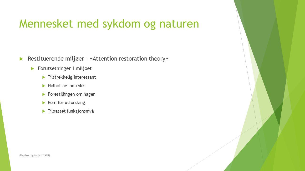 Mennesket med sykdom og naturen  Restituerende miljøer – «Attention restoration theory»  Forutsetninger i miljøet  Tilstrekkelig interessant  Helh