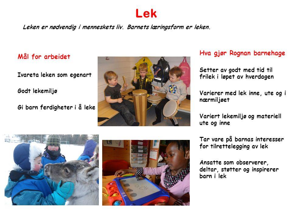 Lek Mål for arbeidet Ivareta leken som egenart Godt lekemiljø Gi barn ferdigheter i å leke Leken er nødvendig i menneskets liv.
