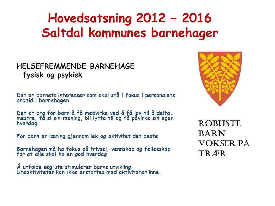 Hovedsatsning 2012 – 2016 Saltdal kommunes barnehager HELSEFREMMENDE BARNEHAGE – fysisk og psykisk Det er barnets interesser som skal stå i fokus i pe