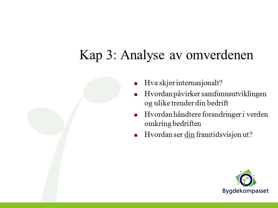 Kap 3: Analyse av omverdenen Hva skjer internasjonalt.