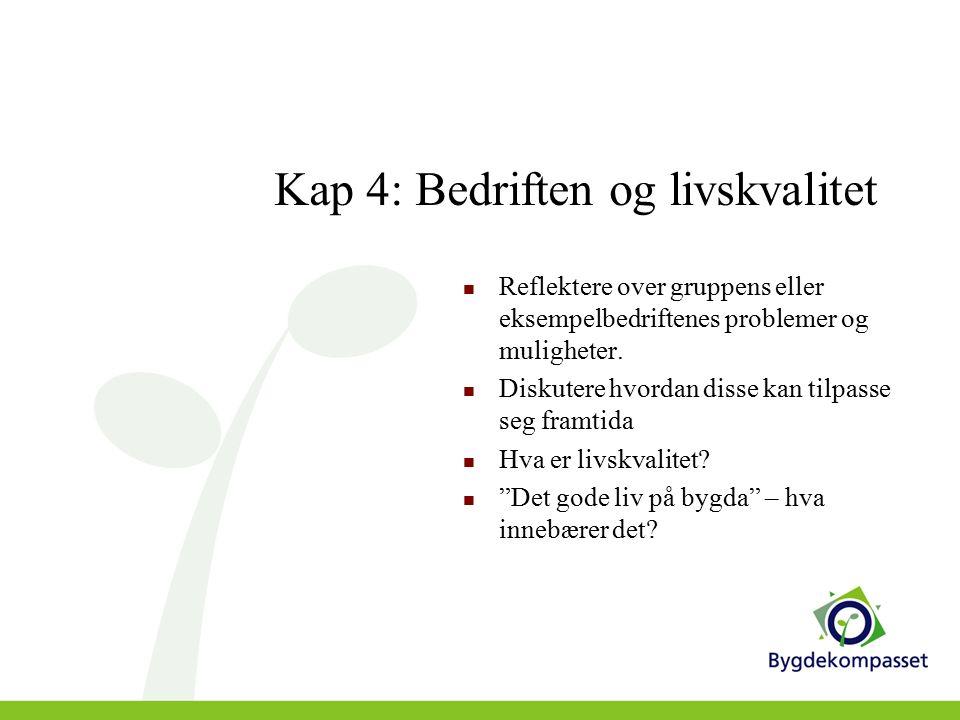 Kap 4: Bedriften og livskvalitet Reflektere over gruppens eller eksempelbedriftenes problemer og muligheter.