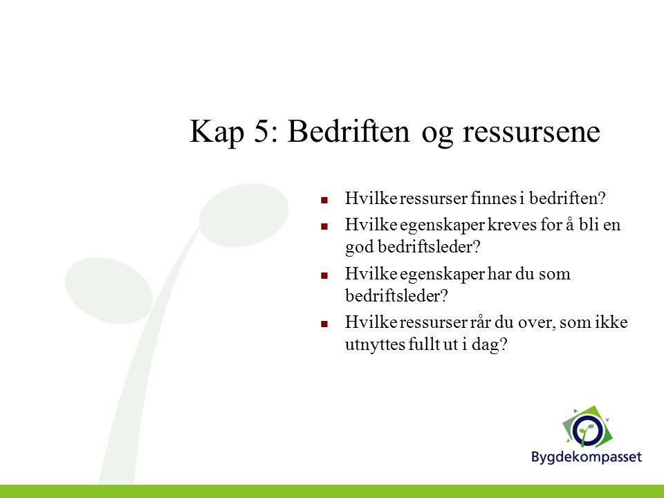 Kap 5: Bedriften og ressursene Hvilke ressurser finnes i bedriften.
