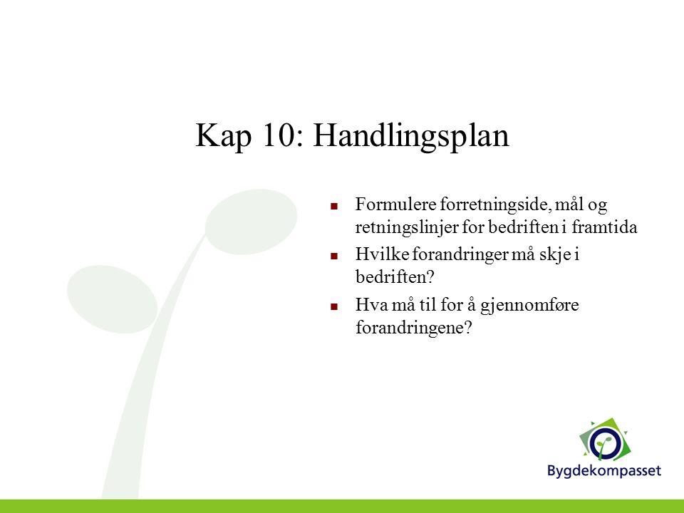 Kap 10: Handlingsplan Formulere forretningside, mål og retningslinjer for bedriften i framtida Hvilke forandringer må skje i bedriften.